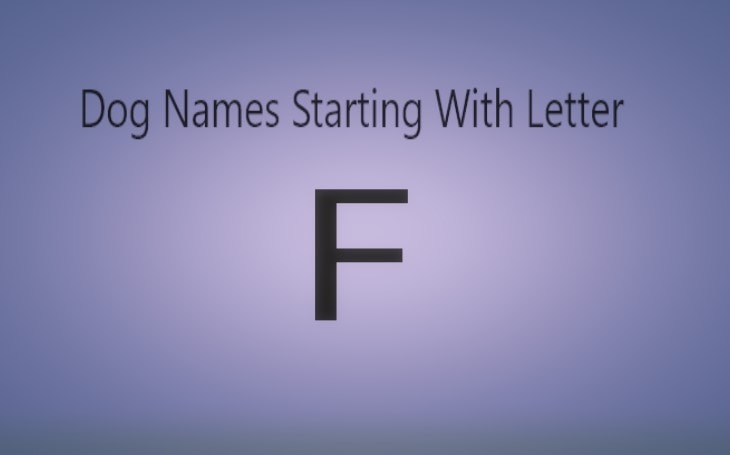 Dog Names that starts with F.