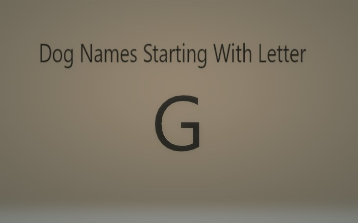 Dog Names that starts with G.