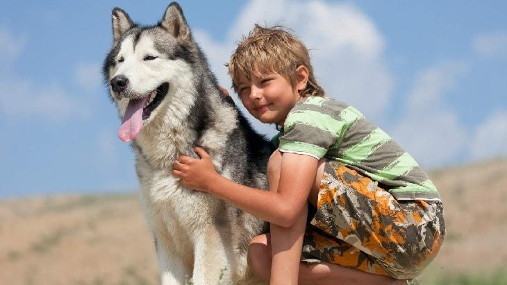Husky and Kid enjoying.