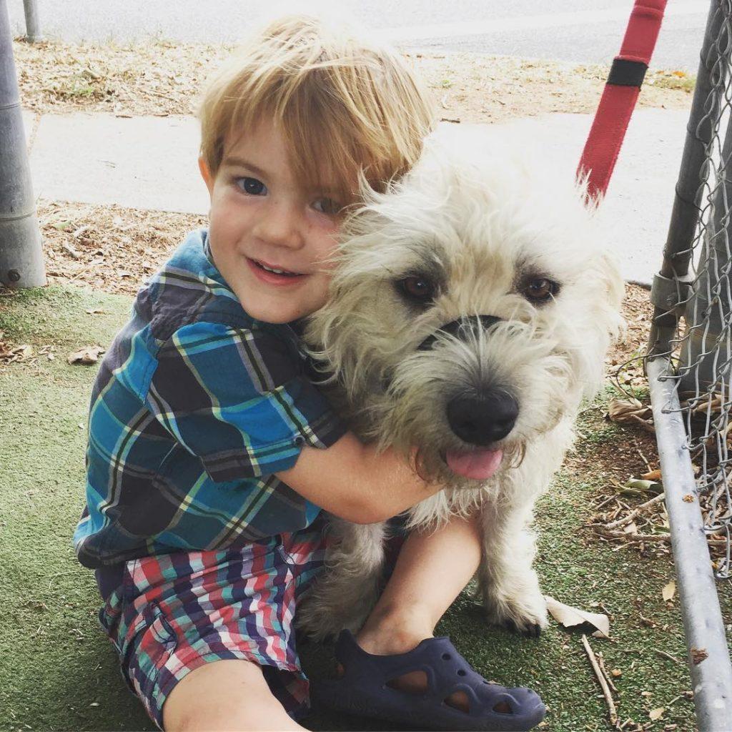 Glen of Imaal Terrier is child friendly