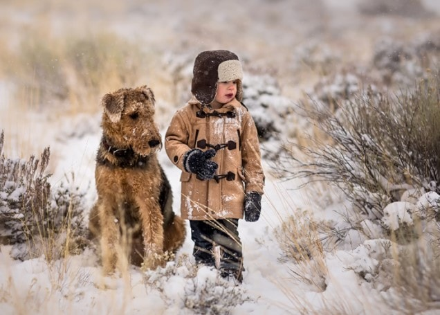 Airedale Terrier Are Friendly With Kids
