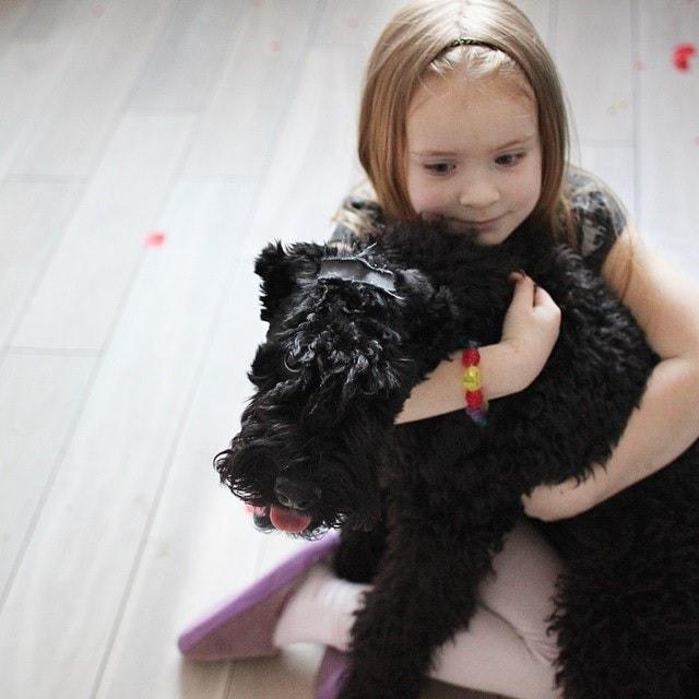 Kerry Blue Terrier Love Children.