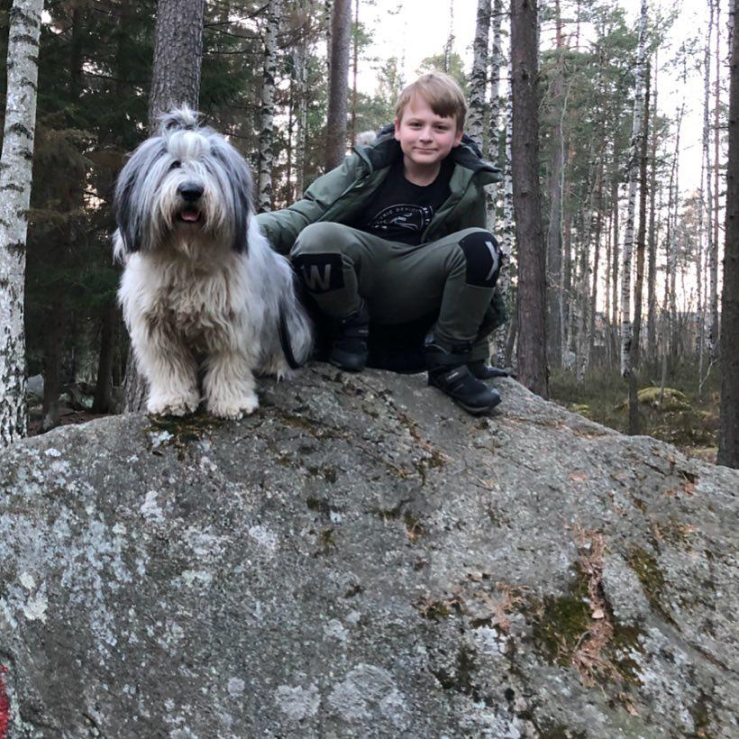 Polish Lowland Sheepdog Friendly With Boy