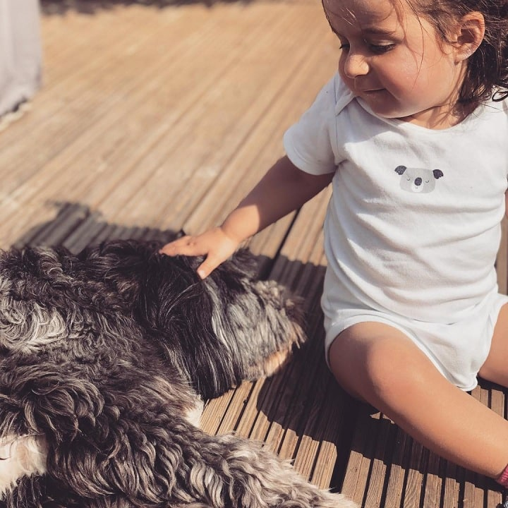 Tibetan Terrier with a baby
