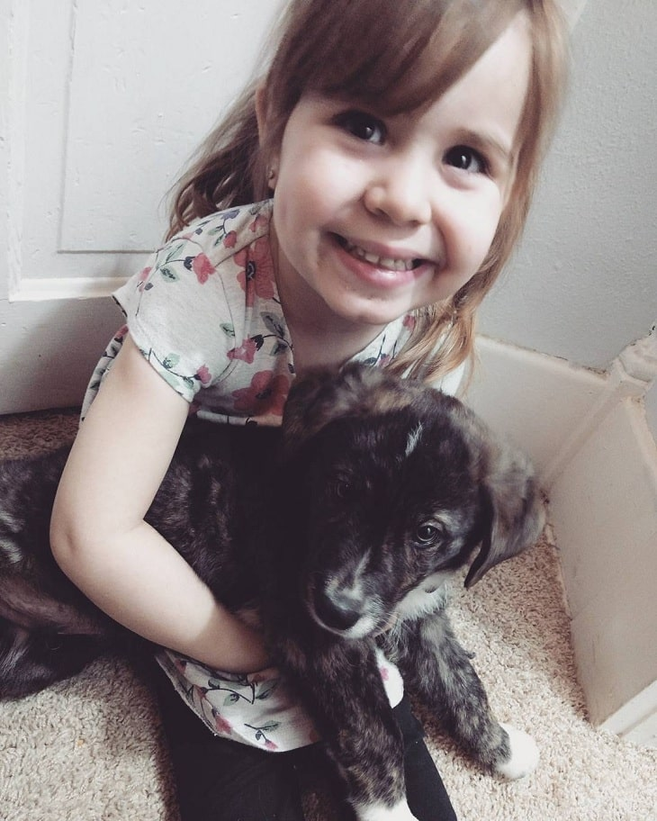 Treeing Tennessee Brindle is child friendly