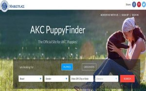 A logo of AKC marketplace