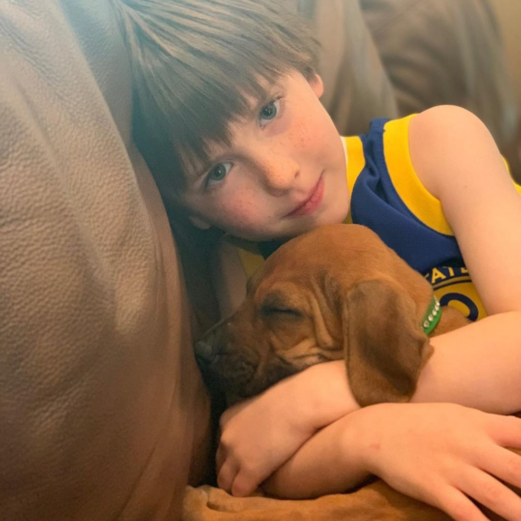 Rhodesian Ridgeback is child friendly