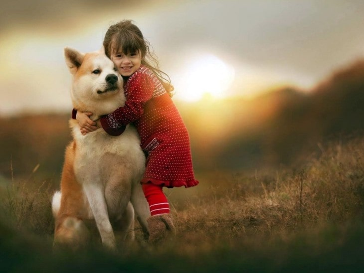 Shiba Inu Are Good With Older Children