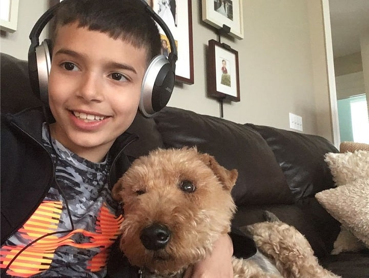 Welsh Terrier is child friendly