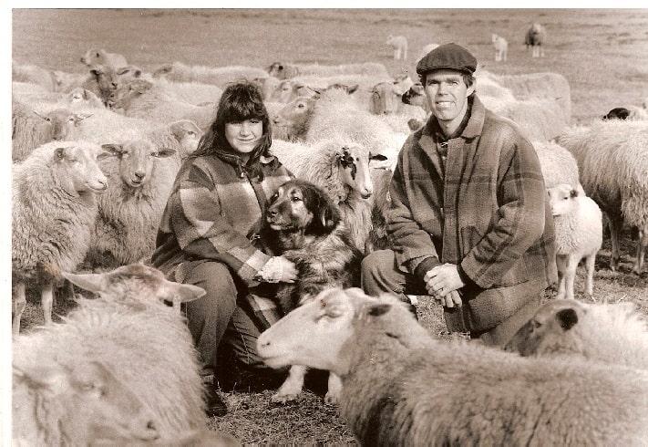 Yugoslavian Shepherd herding sheep with its people