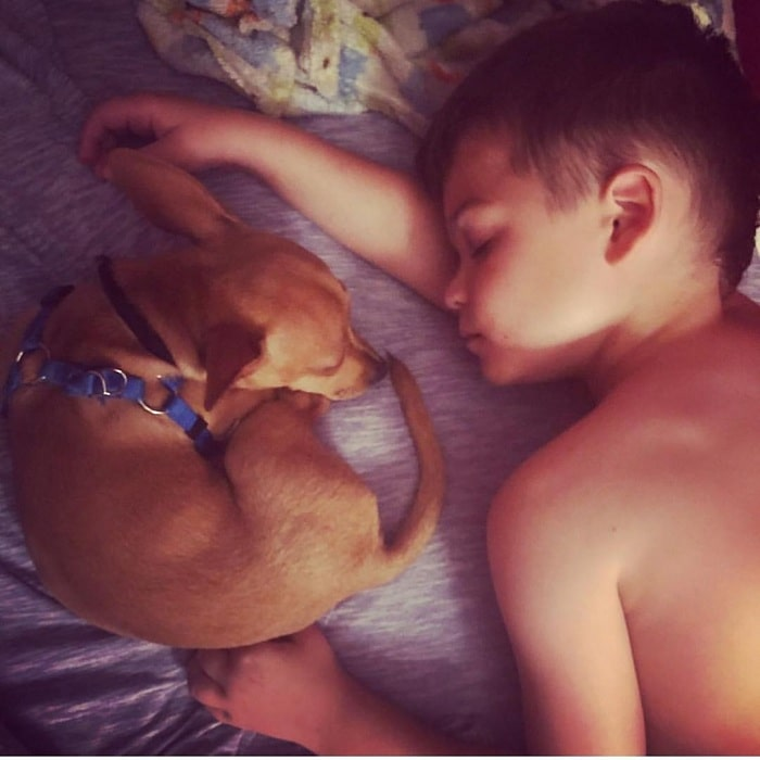 A boy taking a nap with Chipin