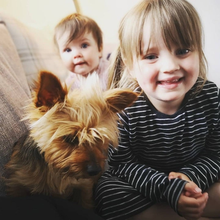 Babies with Yorkshire Terrier