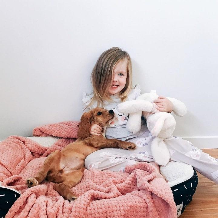 Baby having fun with Cocker Spaniel