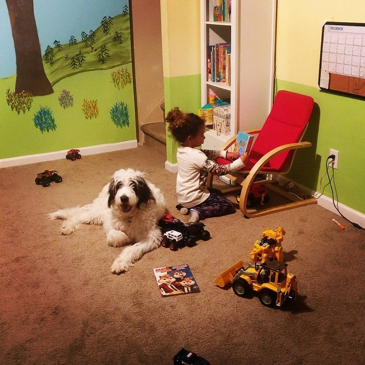 Newfypoo and a baby girl playing toys