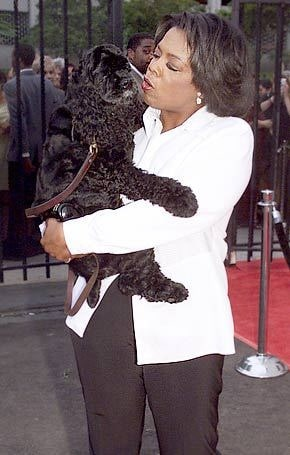 Oprah Winfrey with her Cocker Spaniel