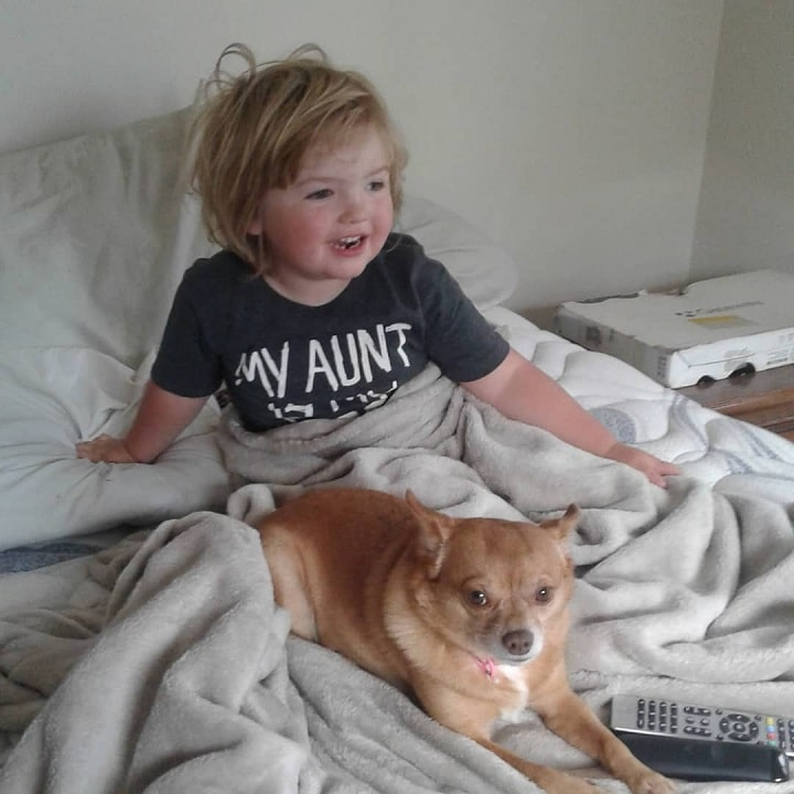 Pomchi sitting on the bed with a baby