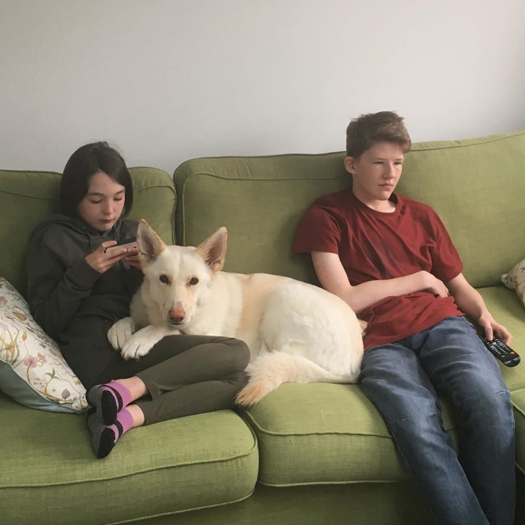 White German Shepherd relaxing with children