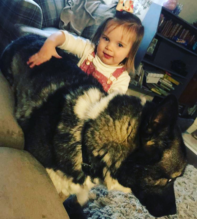 A baby girl and Huskita cuddling