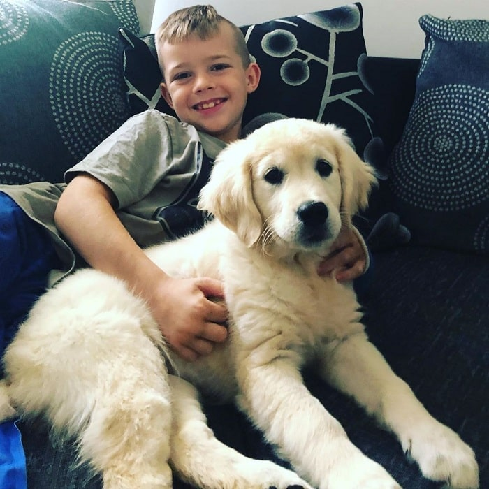 A boy and Golden Retriever puppy relaxing
