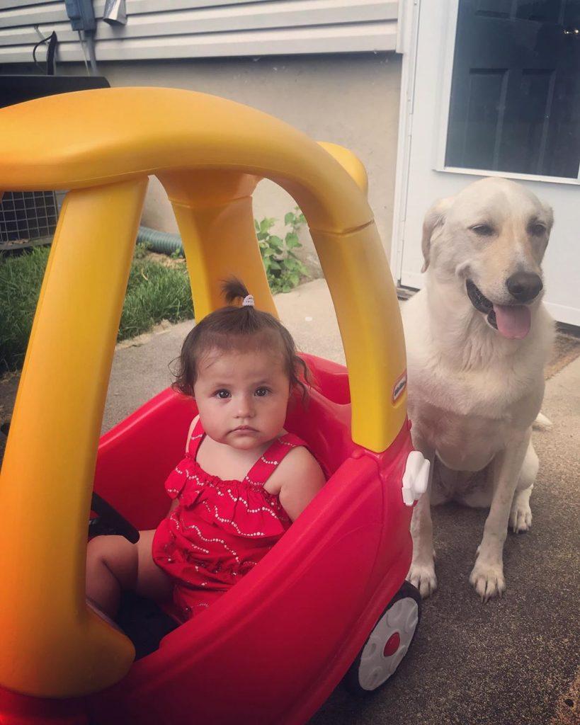 Pyrador guarding a baby