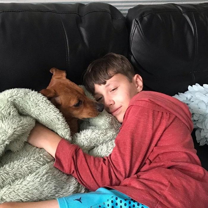 Schweenie cuddling with a boy