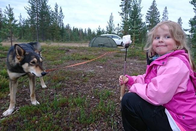 East Siberian Laika is child friendly
