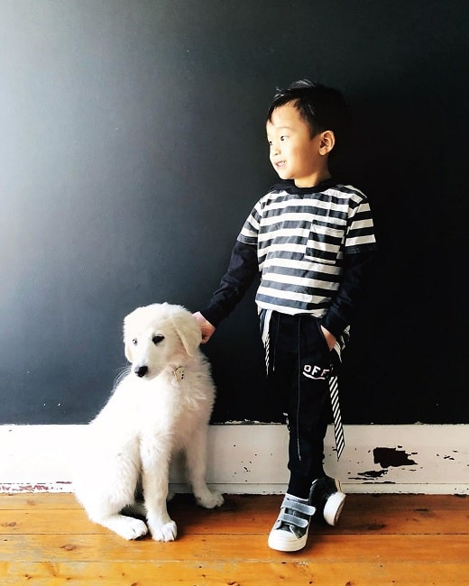 A boy and a Maremma Sheepdog posing for a pic
