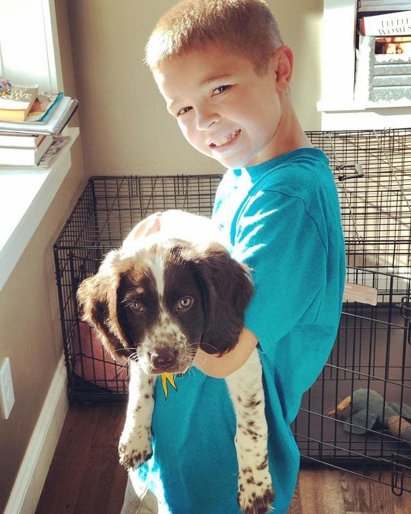 A boy holding Deutscher Wachtelhund