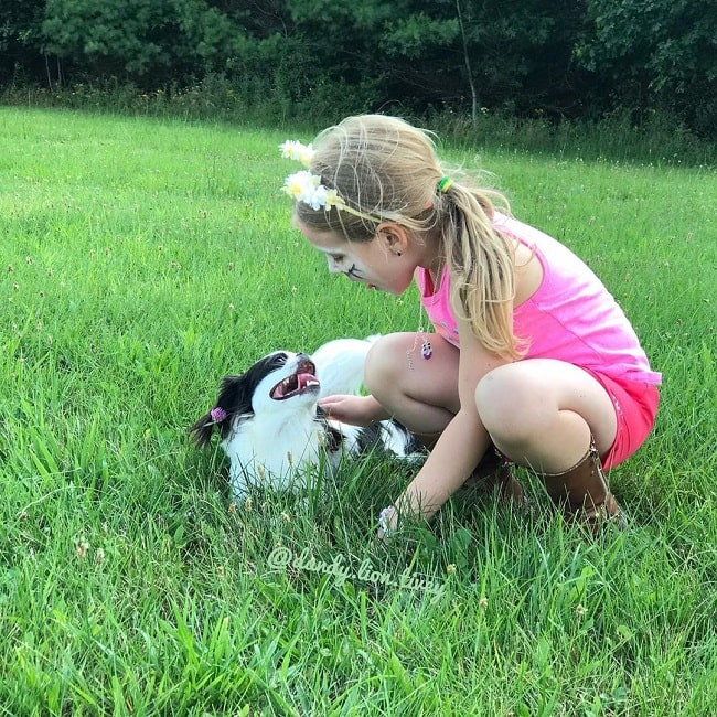 A girl playing with Japanese Chin