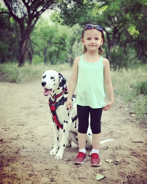 Baby girl and Dalmatian posing for photo