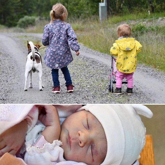 Kids walking Danish-Swedish Farmdog