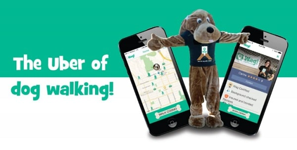 dog walking and sitting app