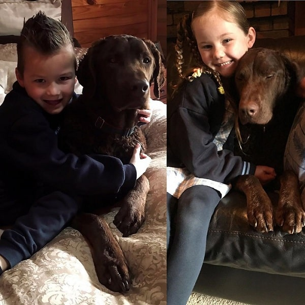 children holding Curly-Coated Retriever