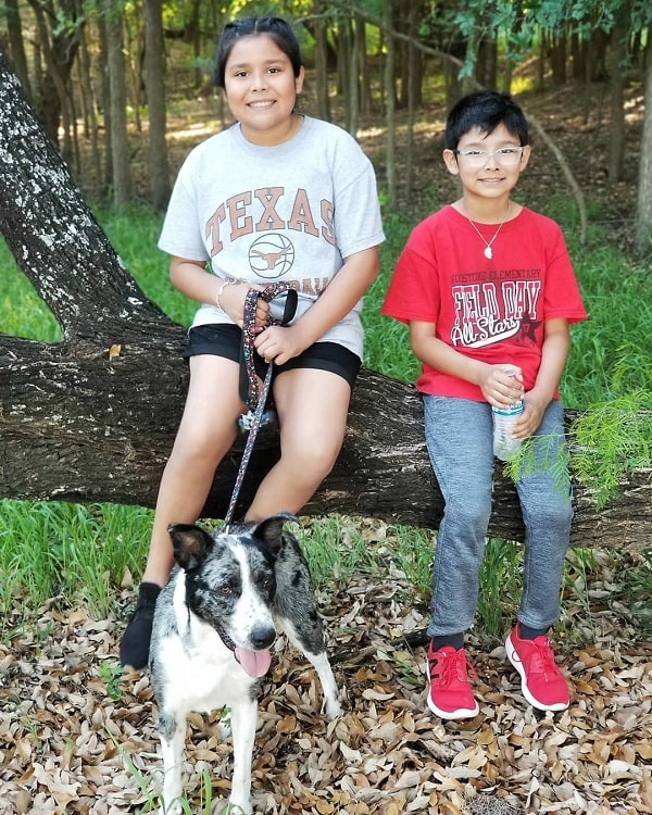 A boy and a girl with Catahoula Australian Shepherd