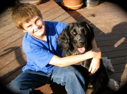 A boy with his Blue Picardy Spaniel