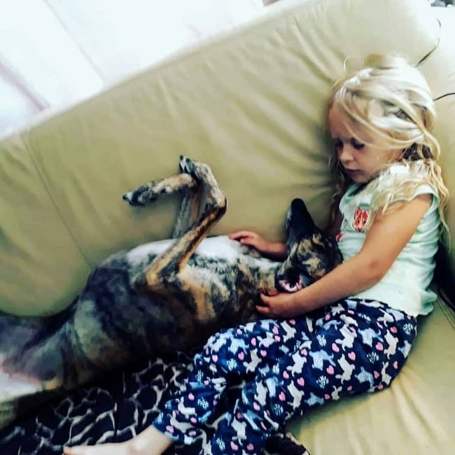 A girl taking a nap with Spanish Greyhound