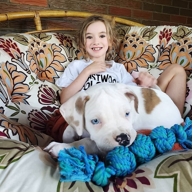 Catahoula Bulldog puppy cuddling with a girl