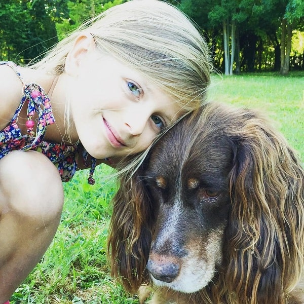 Picard Spaniel posing for a photo with a girl