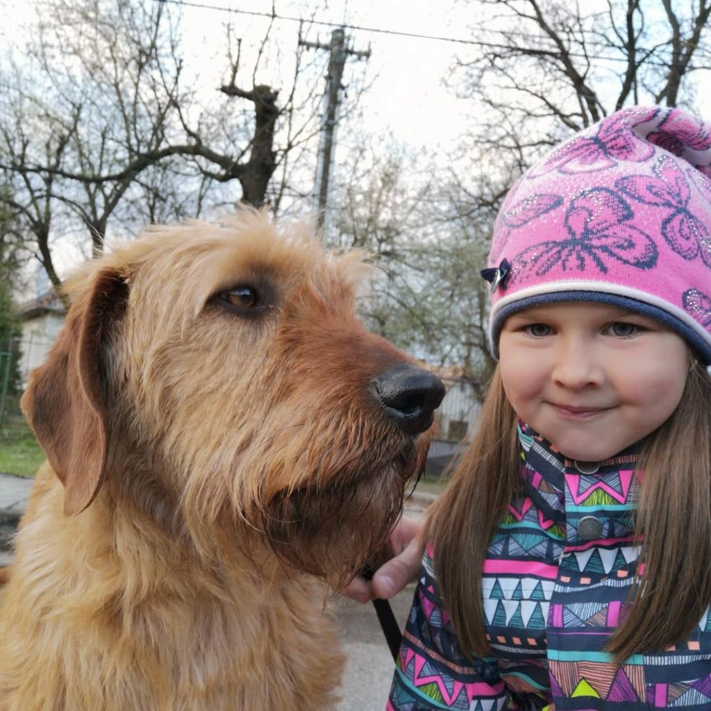 A baby girl and Styrian Coarse-Haired Hound