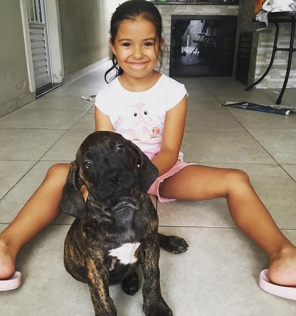 Fila Brasileiros and a girl