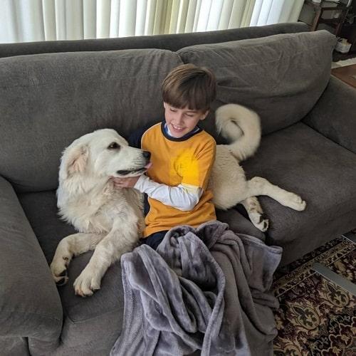 Polish Tatra Sheepdog and a boy cuddling