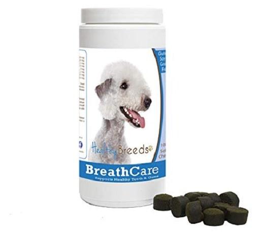 Bedlington Terrier supplements